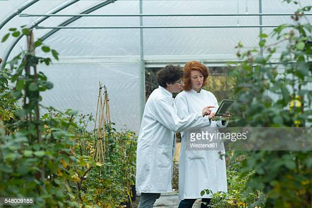 Two female scientists with digital tablet controlling plants in a greenhouse