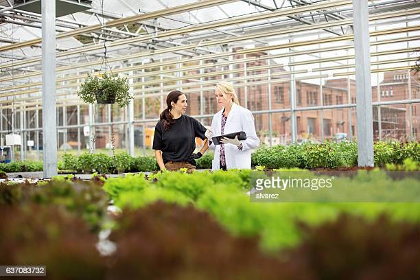 Two female workers in plant nursery