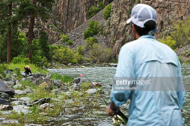 Two fisherman watch a bear carefully in Black Canyon National Park.