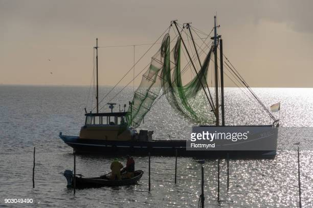 Two fishermen busy with their nets in the IJsselmeer in the Netherlands on November 17th 2017