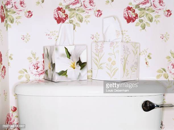 Two flower patterned tissue boxes on toilet lid