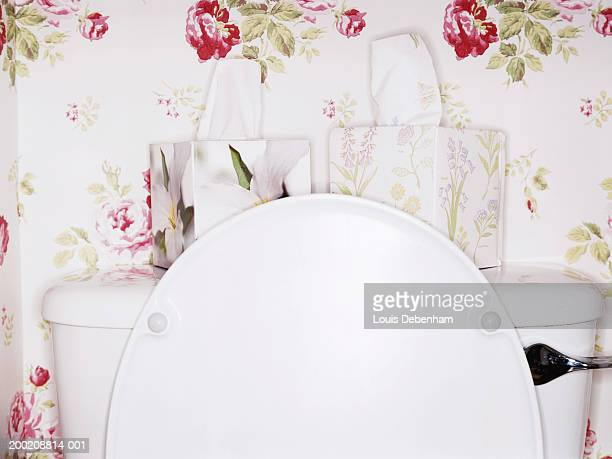 Two flower patterned tissue boxes on toilet with lid open