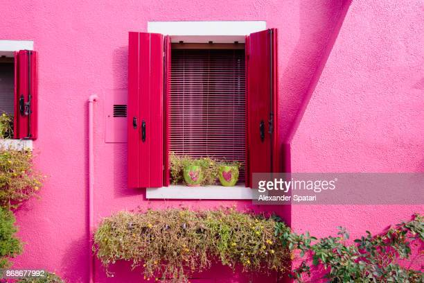 two flower pots with hearts on the window sill of a vibrant pink house - burano foto e immagini stock