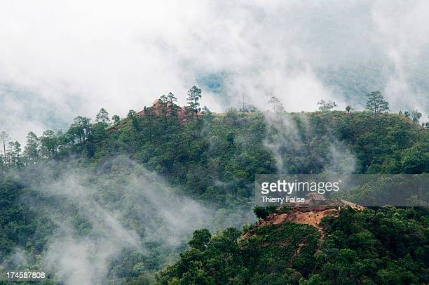 Two fortified camp of the Shan State Army - South lie on top of hills in the Shan State. With an estimated 6,000 men, the SSA-S is one of the last...