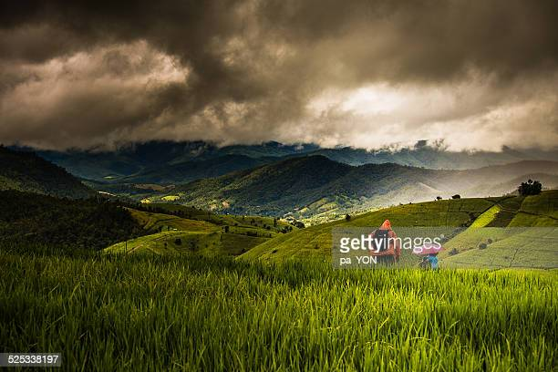 Two friends adventuring in rice field and mountain