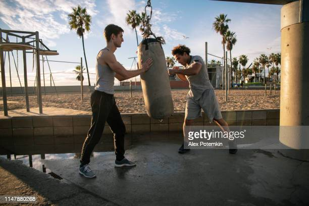 two friends, hispanic and caucasian white, doing boxing workout at the outdoor sporting area. - alex potemkin or krakozawr latino fitness stock photos and pictures