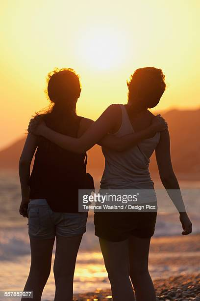 two friends in an embrace as they watch the sunset at the waters edge - terence waeland stock pictures, royalty-free photos & images