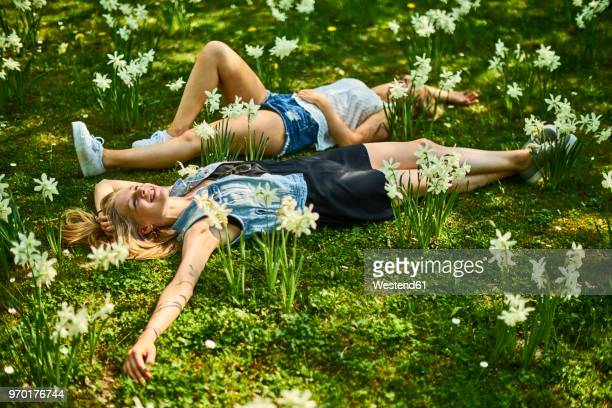 two friends relaxing on flower meadow - frühling stock-fotos und bilder