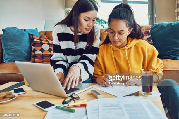 two friends working together at home - female friendship stock pictures, royalty-free photos & images