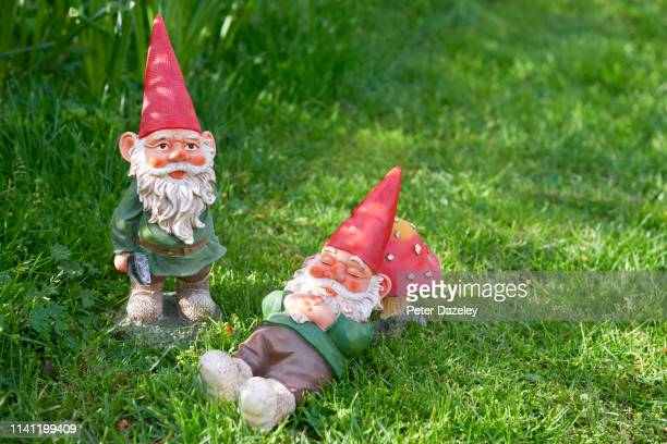 two garden gnomes - resting stock pictures, royalty-free photos & images