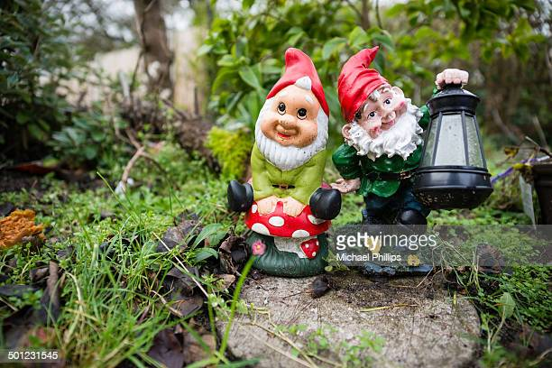 two garden gnomes - gnome stock pictures, royalty-free photos & images