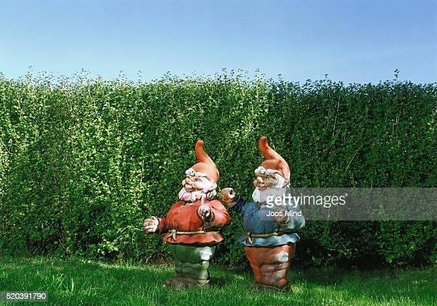 two garden gnomes - garden gnome stock photos and pictures