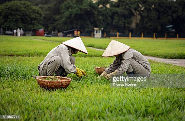 Two gardeners in front of the Ho Chi Minh Mausoleum in Hanoi on October 31 2016 in Hanoi Vietnam