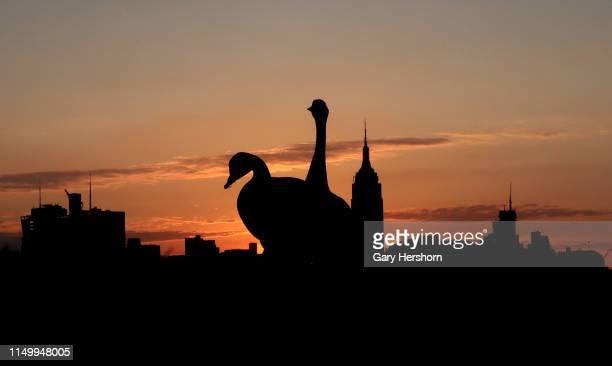 Two geese stand in front of the Empire State Building in New York City as the sun rises on May 17 2019 as seen from Hoboken New Jersey