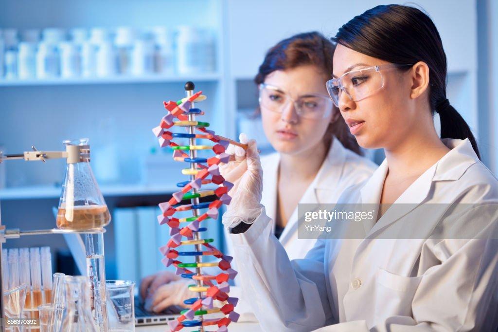 Twee genetische wetenschappers chemici werken samen in een laboratorium : Stockfoto