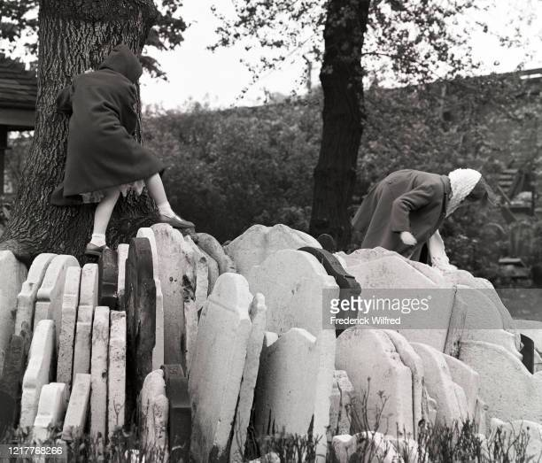 Two girls climbing on The Hardy Tree at the St Pancras Old Church in Somers Town London UK circa 1960