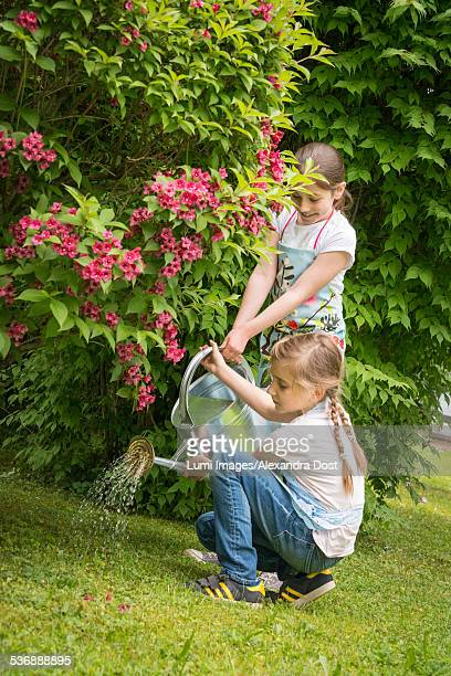 two girls gardening, watering flowers together - alexandra dost stock-fotos und bilder