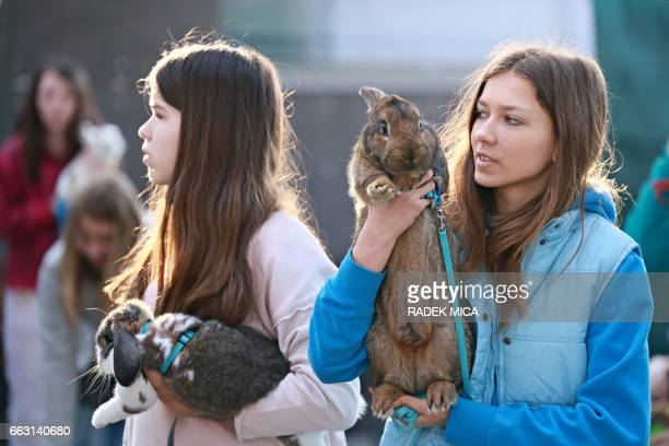 Two girls hold their rabbits and wait to let them take part in a rabbit track and field competition on the sidelines of a hunting exhibition in...