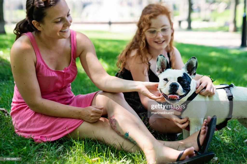 Two girls in a park with a dog : Stock Photo