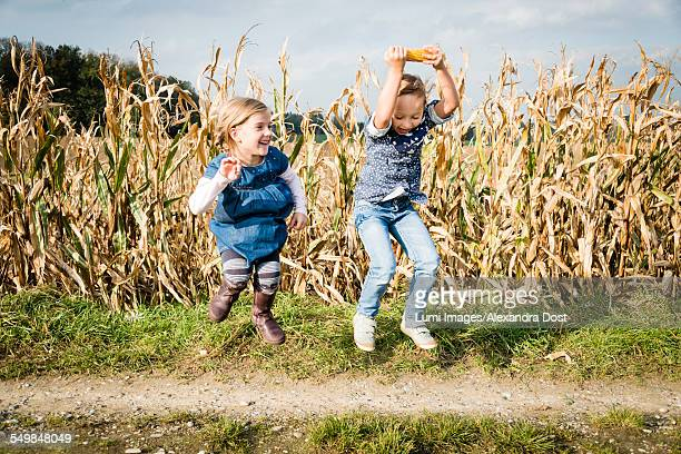two girls jumping in front of maize field - alexandra dost stock-fotos und bilder