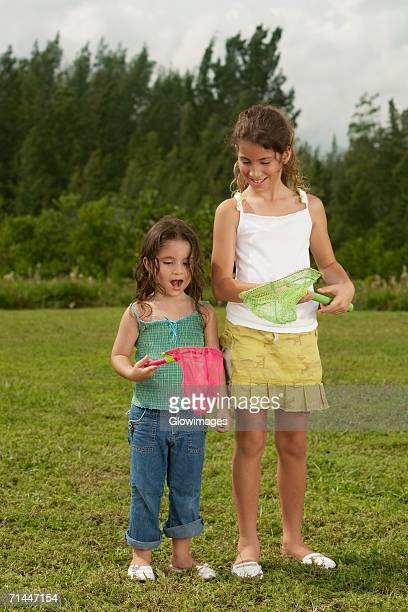 two girls looking at a butterfly net - girls with short skirts stock photos and pictures