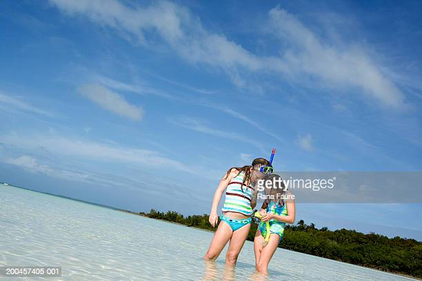 two girls (8-10) looking at sea shells in tropical water - bikini bottom stock pictures, royalty-free photos & images