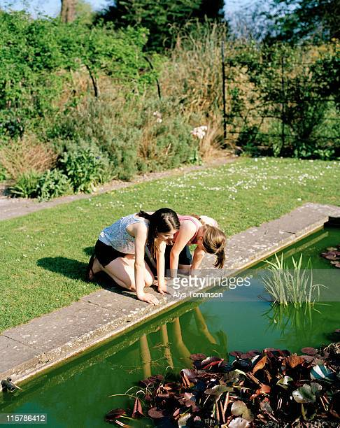 two girls looking into a pond - pond stock pictures, royalty-free photos & images
