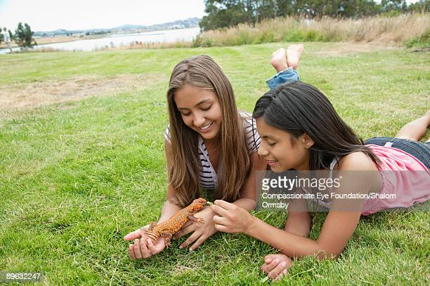 "two girls lying on grass feeding a reptile - ""compassionate eye"" stock pictures, royalty-free photos & images"