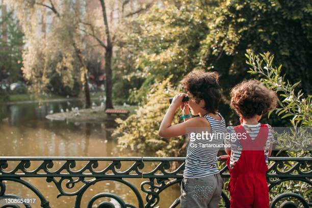 two girls near a park lake looking with binoculars - pond stock pictures, royalty-free photos & images