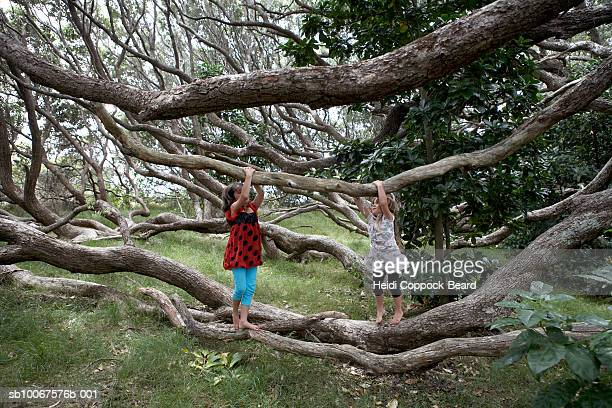 Two girls (6-13) playing in forest