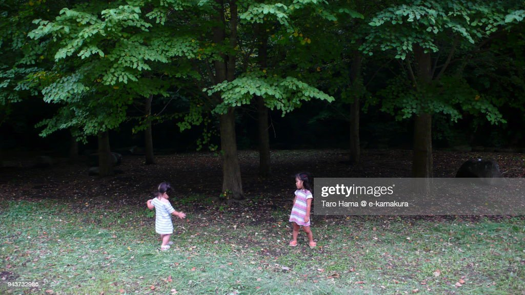 Two girls playing in the park : ストックフォト