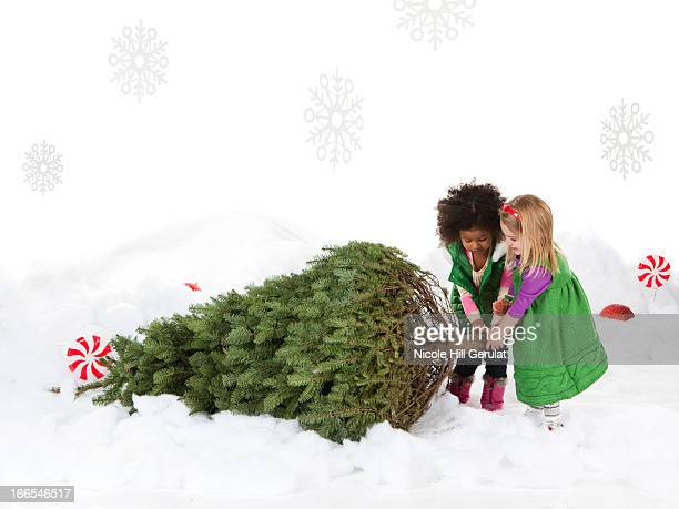 two girls (18-23 months,4-5) pulling christmas tree - 18 23 months stock pictures, royalty-free photos & images