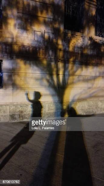 Two girls shadows under a shadow tree. Cadiz