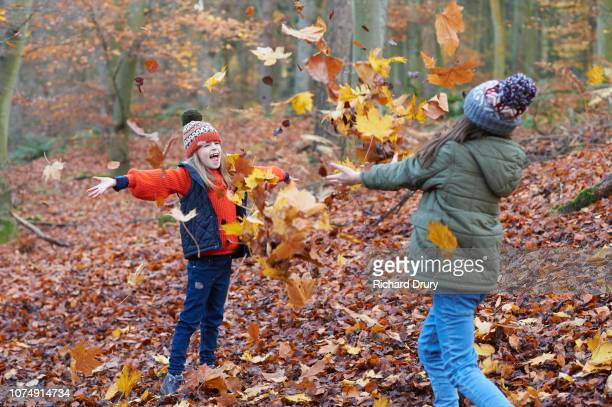 Two girls throwing leaves in the air in Autumnal woodland
