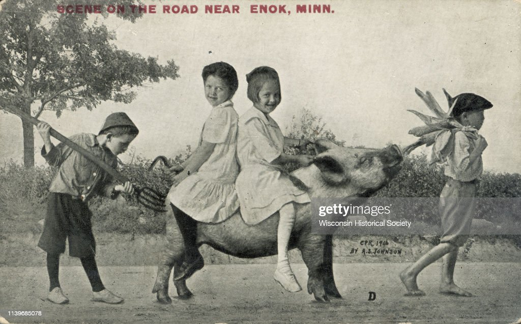 https://media.gettyimages.com/photos/two-girls-wearing-white-dresses-ride-a-pig-sitting-backtoback-waupun-picture-id1139685078
