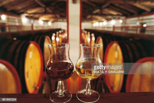 Two glasses of wine with barrels in the background Serralunga Piedmont Italy