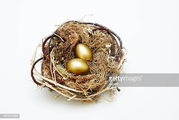 Two gold eggs in a nest