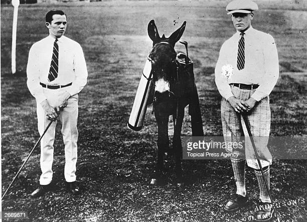 Two golfers at Columbia beside a donkey which is serving as a caddie.