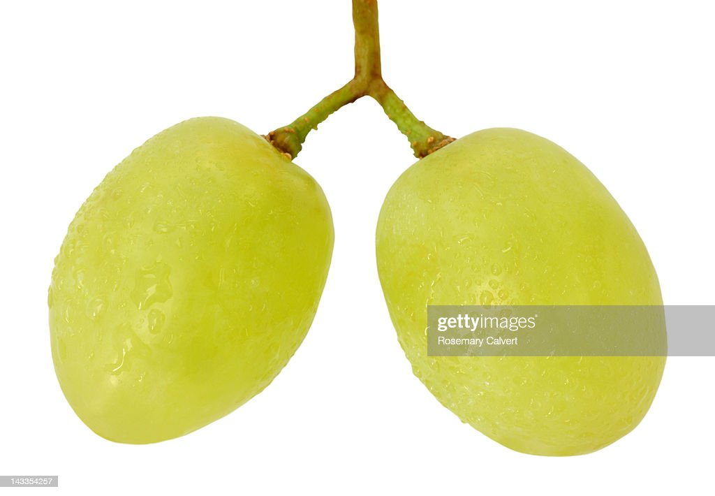Two green grapes joined by stalks : Stock Photo