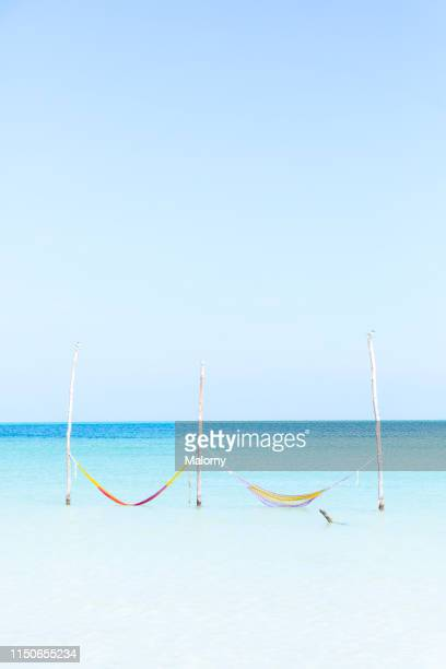 two hammocks in the crystal clear turqoise water at a beach - holbox island fotografías e imágenes de stock