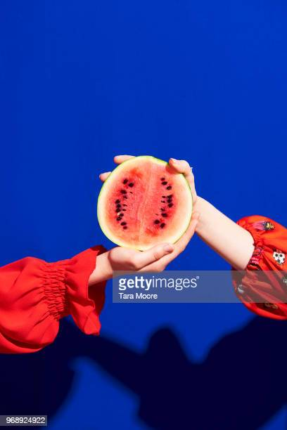 two hands holding watermelon - two people stock pictures, royalty-free photos & images