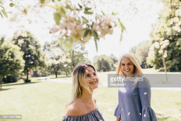 two happy young women in a park at blossoming tree - baumblüte stock-fotos und bilder