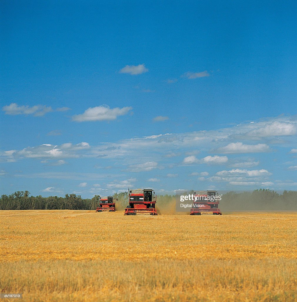 Two harvesters in field : Stock Photo