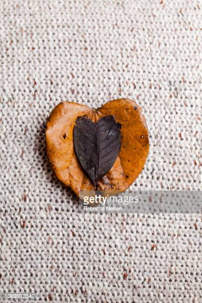 Two heart shaped leaves on woven fabric