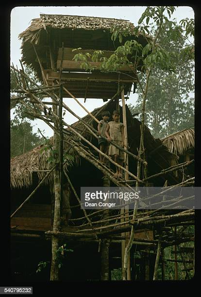 Two Higaonon children on a footbridge outside a tree house in Mindanao, the Philippines.
