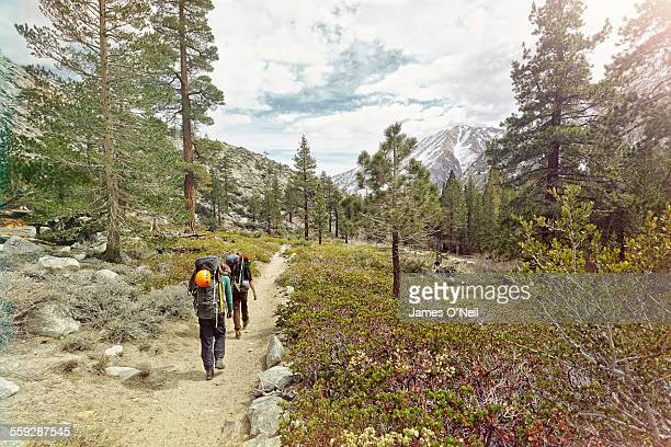 two hikers following a path with wild flowers