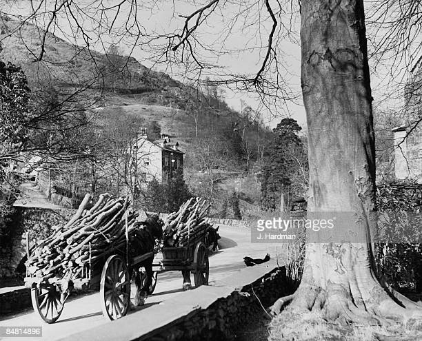 Two horsedrawn carts carrying logs at Brathay Bridge near Ambleside in the Lake District Cumbria 12th January 1951