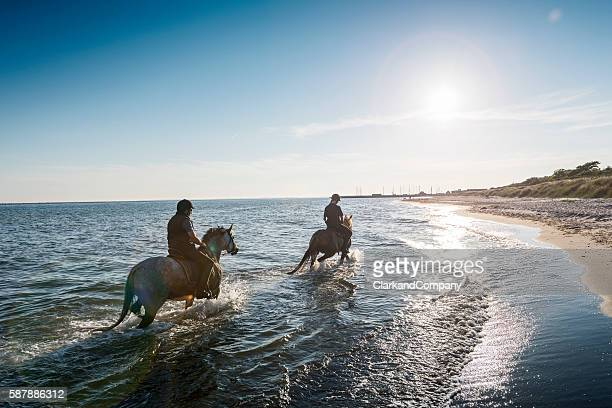 two horses being ridden on the beach into the sunset. - andare a cavallo foto e immagini stock