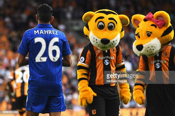 Two Hull City mascots look at Riyad Mahrez of Leicester City prior to kick off during the Premier League match between Hull City and Leicester City...