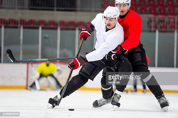 two ice hockey players dueling - hockey player stock pictures, royalty-free photos & images